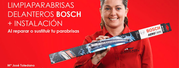 Escobillas BOSCH de regalo!!!